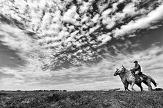 Olhos do Pampa - Tadeu Vilani  Pampa argentino