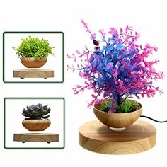 LED Levitating Air Bonsai Pot  Pathonor Magnetic Levitation Suspension Flower Floating Pot Potted Plant for Home Office Decor  Christmas Gift Option ** Click image for more details.Note:It is affiliate link to Amazon.