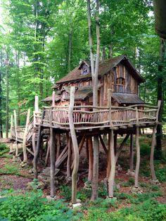 Pin Von Kristi Hatrock Auf Treehouses | Pinterest | Baumhaus Und ... Wendeltreppe Um Einen Baum Baumahus