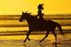 I have always wanted to ride on the beach