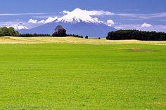 El verano llego - Puerto Varas (Patagonia - Chile) | Flickr