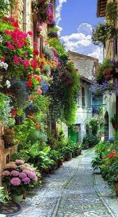 Spello, Umbria. Discover #Italy with Evolution #Travel -> http://italy.evolutiontravel.it/en_US/home.html