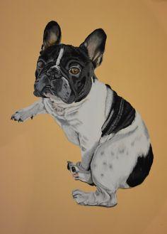 Portrait de bouledogue Français  Portrait de chien La Galerie de Julie Artiste Animalier