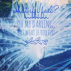 What if I fail? Oh, my darling, but what if you fly? #lifeisbeautiful…