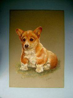 Vintage Pastel Sketch of a Corgi Dog Portrait by Biminicrickets, $45.00