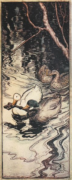 From the tale The Queen Bee. 'The ducks, which he had once saved, dived and brought up the key from the depths' Illustration by Arthur Rackham from the book 'Snowdrop and Other Tales' http://www.amazon.com/gp/product/1447477375/ref=as_li_tl?ie=UTF8&camp=1789&creative=9325&creativeASIN=1447477375&linkCode=as2&tag=reaboo09-20&linkId=3M2TE5OS2H4REJZ2