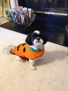 ON SALE 5 dollars off the month of Nov  by LoveandPetFurCrochet, $15.00