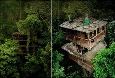 Finca Bellavista is inspired by the movie Star Wars: Return of the Jedi, there was a village in the trees called Ewok. You move arround mostly with cables that pass through platforms up to 28 meters high, you can fly over mountains and waterfalls. Finca BellaVista is today a large community with tree houses, self-sufficient energy and living amidst 300 acres of secondary tropical forest.