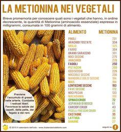 ✔ Gli 8 aminoacidi essenziali: la Metionina nei vegetali