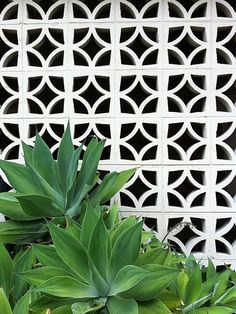 Cobogó de concreto pintado - Cursos on line de Design de Interiores e Paisagismo - www.casaecia.arq.br
