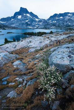 Thousand Island Lake, Ansel Adams Wilderness, Sierra Nevada, California  (by Hank Christensen on Flickr)