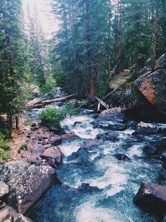Like how river flows, we leave, but we come back...