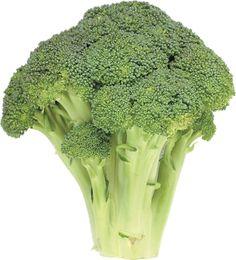 #png #download #indir #brokoli #broccoli