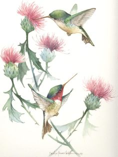 http://carolynshoreswright.net/shop/watercolors/flowers-birds/