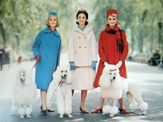 Gals and their poodles. (the one in the middle looks like Katy Perry....)