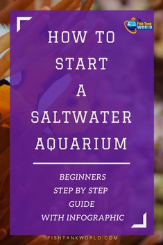 How to start a saltwater aquarium. A comprehensive guide with tips to start a saltwater aquarium that covers all you need to know to start the very first saltwater fish tank and clear common misconceptions between saltwater and freshwater aquarium. via @fishtankworld0195