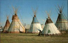 Bing Images - Blackfeet teepee encampment n. Native American Teepee, Native American Beauty, Native American Photos, Native American Tribes, Native American History, Blackfoot Indian, Native Indian, Native Art, Indian Teepee