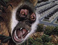 SCRATCHBOARD by Douglas Smith, via Behance    #Drawing #Art #Monkey