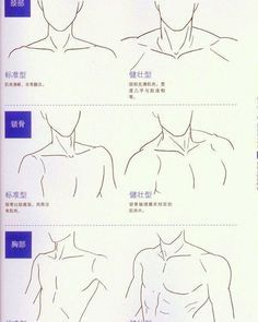 Male torso reference. Left is for uke, right is seme.