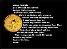 ewtn devotionals pentecost seven