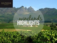 Explore the Cape Winelands, let Giltedge Africa take you there!