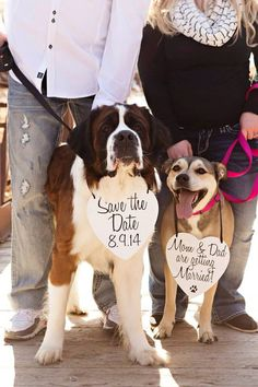 Two Dogs Set My Humans are getting Married by RusticNaturalBeauty