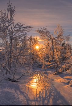 Winter sunrise in Norway. - title Frost - by Rune Askeland