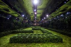 http://blog.bureaubetak.com/post/156405066444/dior-couture-ss17-musée-rodin-paris-by-bureau