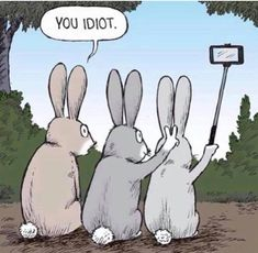 Humor Discover 15 Ideas Funny Cartoons Pictures Hilarious Jokes For 2019 Stupid Funny Memes Funny Puns Funny Relatable Memes Haha Funny Hilarious Jokes Funny Humor Memes Humor Cute Funny Cartoons Funny Stuff Funny Animal Jokes, Funny Puns, Really Funny Memes, Cute Funny Animals, Stupid Funny Memes, Funny Laugh, Funny Relatable Memes, Hilarious Jokes, Funny Humor