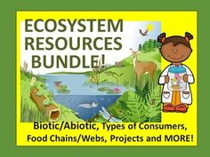 Ecosystem Resources Bundle: Made up of 11 Lessons- including sorts, activities, food chain, interactions, and task cardsBe sure to check out the products included in this great value HUGE bundle!Food Chain, Food Web, Energy Pyramid Cut and PasteEcosystem Food Chain Web Task cards (5)Food Chain Sort Cut and Paste Producer, Consumer, Decomposer EcologyBiotic or Abiotic Sort Cut and Paste (Living or Nonliving)That's Life!