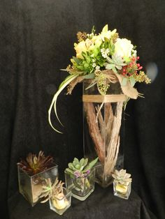 Succulents, green orchid, safary sunset, bark and burlap.