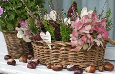 podzimní truhlík - Hľadať Googlom Flower Basket, Wicker Baskets, Sweet Home, Homemade, Fall, Flowers, Inspiration, Home Decor, Advent