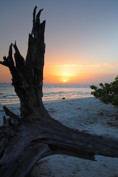✯ Sanibel Sunrise - Sanibel Island, Florida
