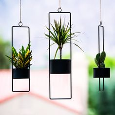 Not your ordinary hanging planter. Upgrade from plastic with the modern Upright Hanging Planter. Sophisticated in its simplicity, these planters feature a metal wire . Metal Planters, Modern Planters, Flower Planters, Flower Pots, Succulent Planters, House Plants Decor, Plant Decor, Metal Plant Stand, Modern Plant Stand