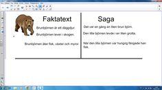 Skillnad på faktatext och saga Grade 1, School Supplies, Knowledge, Language, Teacher, English, Writing, Education, Math