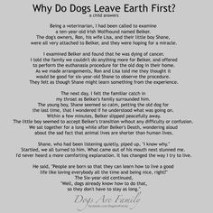Why do dogs leave Earth first?