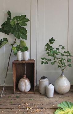 Branches and ceramics