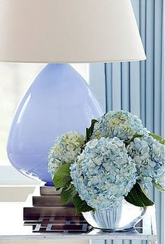 Blue hydrangeas by the bed