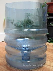 DIY Self Watering Container from a 5 Gallon Water Cooler Bottle 5 Gallon Water Bottle, Water Bottle Crafts, Water Jugs, Water Bottles, Self Watering Plants, Self Watering Containers, Container Gardening, Vegetable Gardening, Gardening Tips