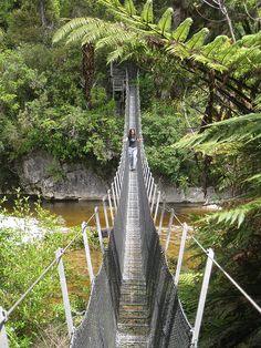 Heaphy Track img_7114.jpg by Mikecron, via Flickr. #hiking #walking #newzealand #nzwalks