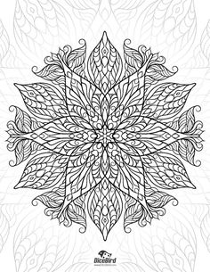 Adult Coloring E Book 28 Designs Flowers By DiceBirdColoringPage