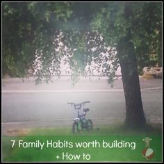 7 Family Habits worth building and How to