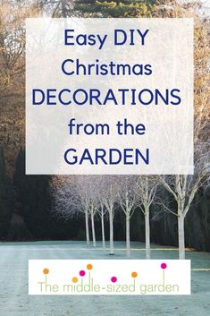 Ideas for Christmas decorations to make for the home in rustic, traditional or contemporary style. Eco-friendly and cheap! Diy Christmas Decorations Easy, Garden Party Decorations, Christmas Garden, Christmas Diy, Vintage Garden Parties, Insect Hotel, Easy Garden, Garden Ideas, Natural Christmas