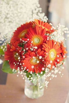 16 Stunning Summer Wedding Flowers to Embrace in June, July and August. One 16 Stunning Summer Wedding Flowers---orange Gerbera daisies wedding centerpieces with baby breath,. Daisy Wedding Flowers, Wedding Bouquets, Fall Flowers, Wedding Colors, Margaritas Gerbera, Daisy Centerpieces, Tall Centerpiece, Centerpiece Wedding, Gerbera Bouquet