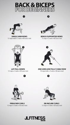 Back & Biceps For Beginners
