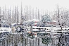 Winter in Hangzhou, China