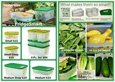Fridge Smart Containers www.my.tupperware.com/bmartin