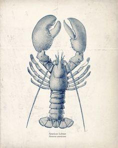 Antique Sea Horse Art Print Natural History by vintagebytheshore, $14.00