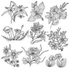 Set of 9 elegant decorative flowers design elements Floral branches Floral decorations for vintage w Stock Vector
