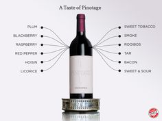 "[infographic] ""A taste of #Pinotage"" Jun-2014 by Winefolly.com - #Wine #grapes"